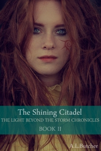The Light Beyond the Storm Chronicles - Book 2