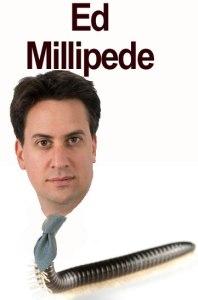 Ed Millipede